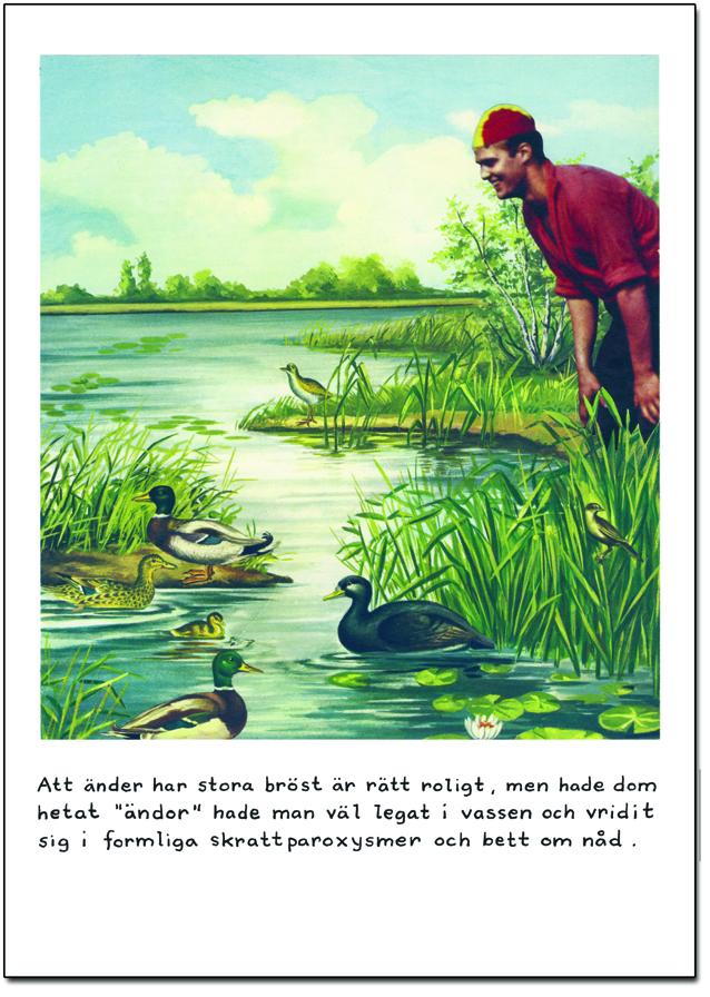 """Postcard Jan Stenmark """"Ändor"""""""