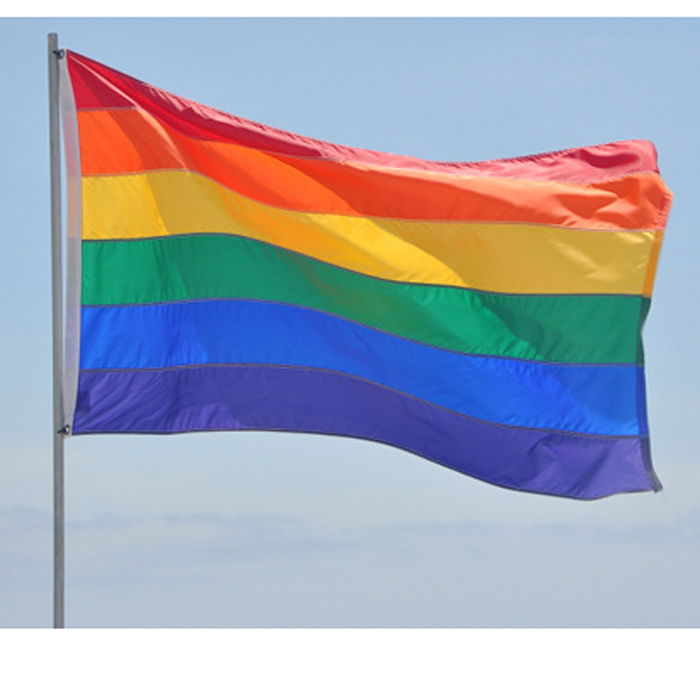 Pride flag 90x150 cm