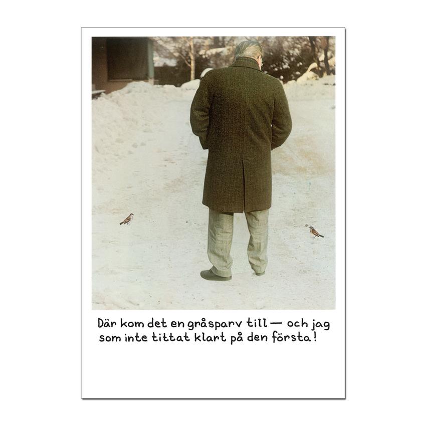 "Kortti Jan Stenmark ""Sparv"""