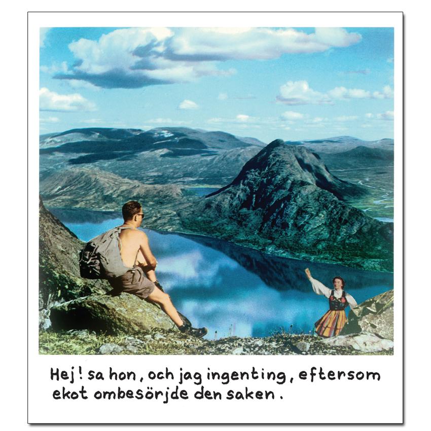 Magnet Jan Stenmark 'Ekot'