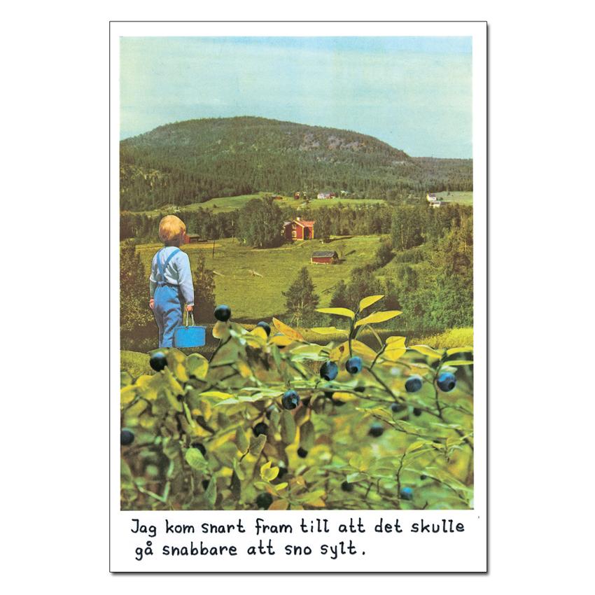Magneetti Jan Stenmark 'Blåbär'