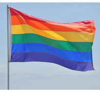 Flagga Pride 60x90 cm