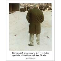 Affisch Jan Stenmark 'Gråsparv' liten 24x30 cm